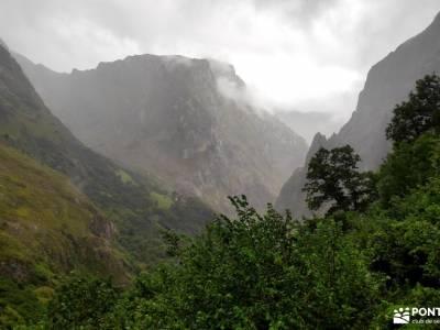 Corazón de Picos de Europa;parque natural arribes del duero urdaibai reserva de la biosfera ercavic